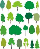 Trees - cartoon set. Color vector illustration isolated trees – cartoon Stock Images