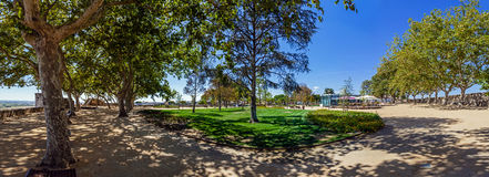 Trees casting fresh shade on the ground during summer in the Portas do Sol Garden Royalty Free Stock Images