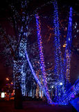 Trees in Christmas Moscow Royalty Free Stock Image