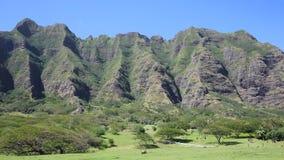Trees and cliffs of Kualoa Ranch. Film location of Jurassic Park - Oahu, Hawaii stock footage