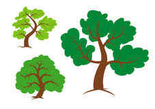 Trees clipart Stock Photography