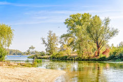 Trees Close to the River Stock Photography