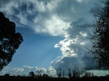 Trees clouds and blue sky. In the country side of Corfu Royalty Free Stock Image