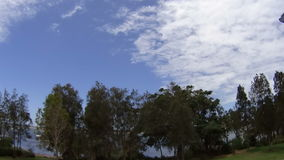 Trees Clouds Timelapse. Timelapse of clouds and trees by the water during the day stock footage