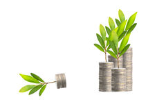 Trees on coins Stock Photography