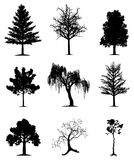 Trees collection. Collection of 9 trees on isolated white background. EPS file available Stock Image