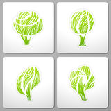 Trees. Collection of design elements. Stock Photography