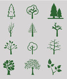 Trees. Collection of design elements. Icons set Stock Photography