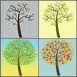 Trees collection - four seasons Royalty Free Stock Photography