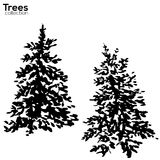 Trees collection. Ink Fir silhouettes Royalty Free Stock Photo