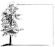 Trees collection. Ink trees grunge frame. Vector Trees collection. Ink sketched grunge frame Royalty Free Stock Photo