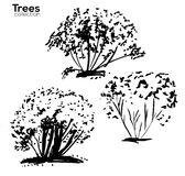 Trees collection. Ink trees silhouettes. Vector Trees collection. Ink sketched trees silhouettes Royalty Free Stock Photo