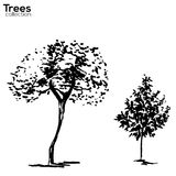 Trees collection. Ink trees silhouettes. Vector Trees collection. Ink sketched trees silhouettes vector illustration