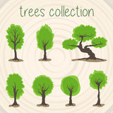 Trees Color Vector Selection Royalty Free Stock Image