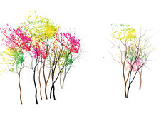 Trees,colorful trees in autumn vector illustration Royalty Free Stock Image