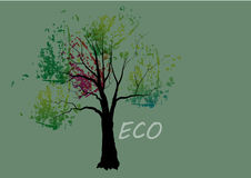 Trees,colorful trees in autumn vector illustration Royalty Free Stock Photo