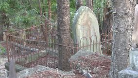 Trees compete with headstones in overgrown dilapidated cemetery. Brisbane Australia, in a 145 year old overgrown cemetery, the graves are weathering time, and stock footage