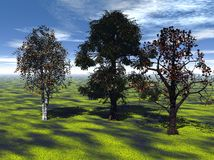 Trees in countryside. Scenic view of trees casting shadows on green countryside fields, blue sky and cloudscape in background. Image created by ray tracing Stock Images