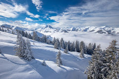 Trees covered by fresh snow in Alpine mountains - Austria from K Royalty Free Stock Image