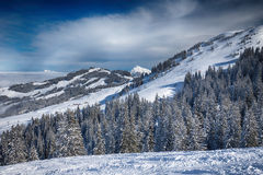 Trees covered by fresh snow in Austria Alps from Kitzbuehel ski Royalty Free Stock Images