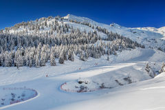 Trees covered by fresh snow in Tyrolian Alps - Zillertal arena, A Stock Photos