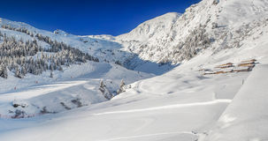Trees covered by fresh snow in Tyrolian Alps - Zillertal arena, A Stock Image