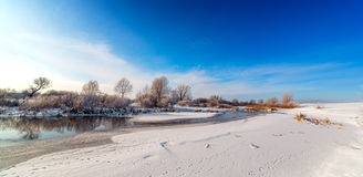 Trees covered with hoarfrost on the banks of  frozen river. Royalty Free Stock Images