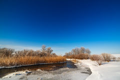 Trees covered with hoarfrost on the banks of  frozen river. Royalty Free Stock Photos