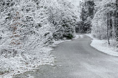 Trees covered with hoarfrost rime ice along the curvy road. Beautiful winter scene Royalty Free Stock Photo