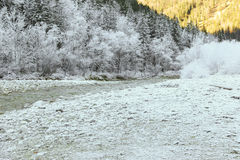 Trees covered with hoarfrost rime ice along the stream Royalty Free Stock Image