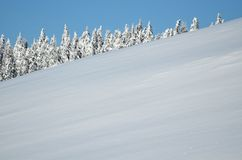 Trees covered with hoarfrost and snow in mountains Royalty Free Stock Photo