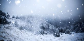Trees covered with hoarfrost and snow in winter mountains - Chri Royalty Free Stock Image