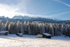 Trees Covered With Snow In The Italian Dolomites Stock Image