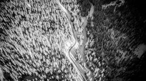 Trees covered in snow with a road in between from above. Aerial stock images