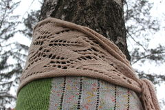 Trees covered with wool scarf Royalty Free Stock Image
