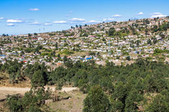 Trees and Crowded Township Housing Settlement in Marianne Hill Stock Image
