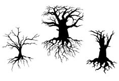 Dead trees for ecology design. Trees with dead branches and roots isolated on white background. Vector illustration for ecology concept design Royalty Free Stock Photos