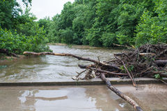 Trees and debris against a bridge during flooding. Piney river in Missouri is flooded from Tropical Storm Bill, heavy rains caused debris to back up and block Royalty Free Stock Photography