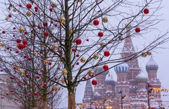 Trees decorated with Christmas toys against the background of St. Basil`s Cathedral. Moscow. Kremlin stock photo