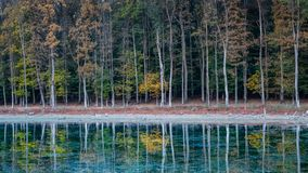 Trees and deep forest reflecting on the crystal clear waters stock images