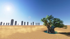 Trees in the desert. Royalty Free Stock Photo