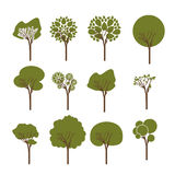 Trees design. Over white background vector illustration Stock Photos