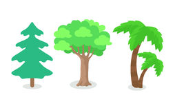 Trees of Different Continental Zone Isolated Royalty Free Stock Images