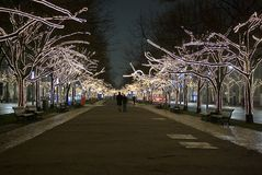 Trees downtown decorated with lights Royalty Free Stock Photography
