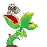 Trees eat money. Royalty Free Stock Photos