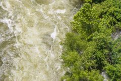 Trees at the edge of a violent water release. From a dam that for most years is not allowing any water to flow Royalty Free Stock Image