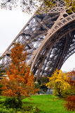 Trees and Eiffel Tower's leg Royalty Free Stock Photo