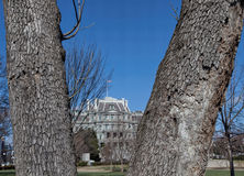 Through the Trees--Eisenhower Executive Office Building Royalty Free Stock Photography
