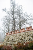 Trees and enclosure in winter mist Royalty Free Stock Images