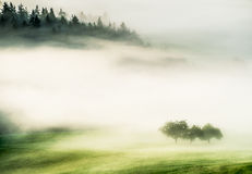 Morning fog over a valley in autumn Royalty Free Stock Photography